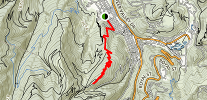 Johns Trail to Treasure Hill Map