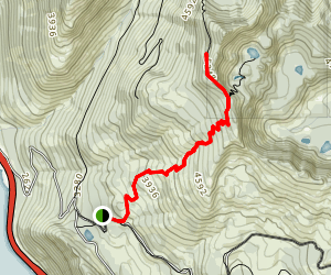Mount Margaret Trail Map