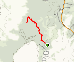 Percy Quin State Park Nature Trail Map