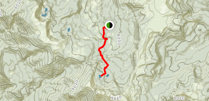 Golden Trout Lakes Trail Map