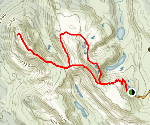 Mount Field and Tarn Shelf Loop Map