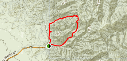 Goat Canyon to Dry Canyon Loop Map