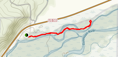 Neversink Trail Map