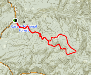 Gallegos Peak via NM 518 Map