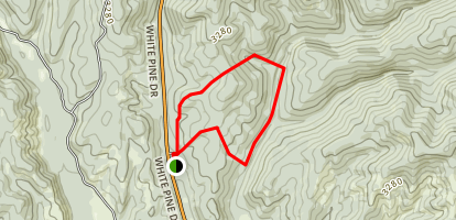 White Pine National Recreation Trail Map