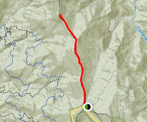 Little Butt and Point Misery Hike Map