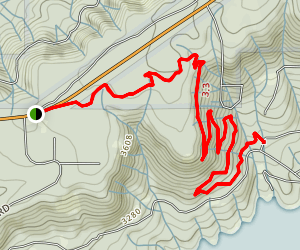 Scotts Flat Trail Map