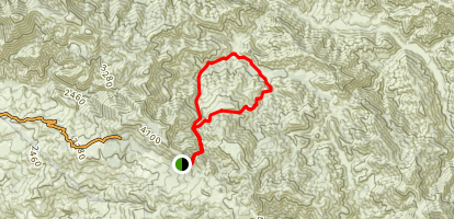 Figueroa Mountain to Davy Brown Campsite Trail Map