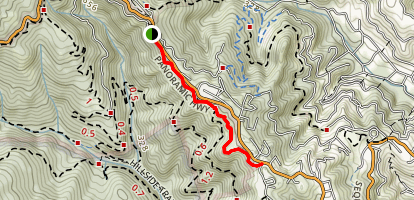 Panoramic Trail Map