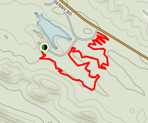 Wild 40 Trail Map