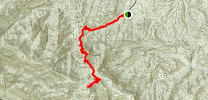 Thorn Point Map