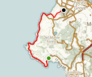 Pebble Beach Cruise Map