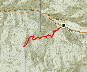 Don Cecil Trail Map