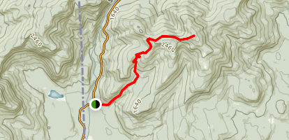 Bickford Brook Trail to Speckled Mountain Map