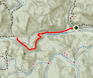 Davidson River Trail to Cove Creek Map