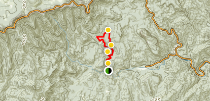 Cove Creek and Caney Bottom Trail Map