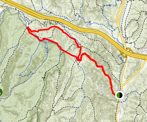 The Lizard Tail Trail Map
