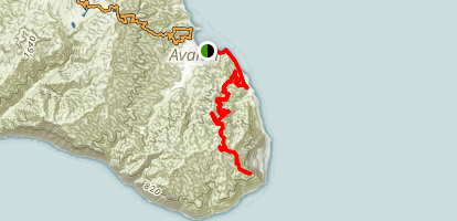 Catalina Island: Avalon to Pebbly Beach to Trans Catalina Trail Map
