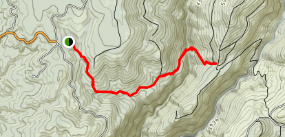 Gold Dollar Trail Map