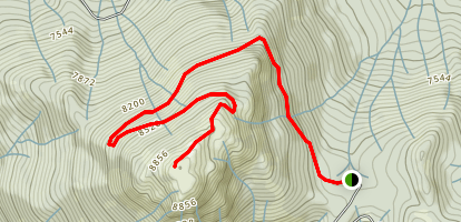 Mount Tom Fire Lookout Trail Map