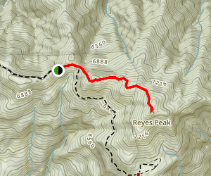 Reyes Peak Trail Map