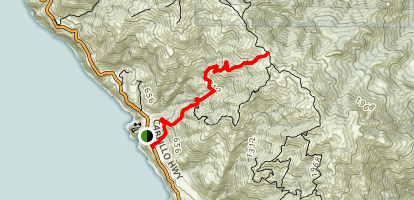 Ragged Point Fire Road Trail Map