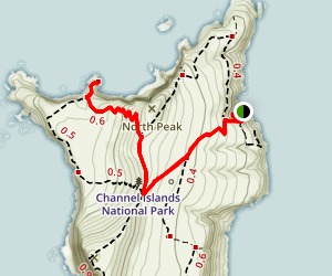 Elephant Seal Cove Trail Map