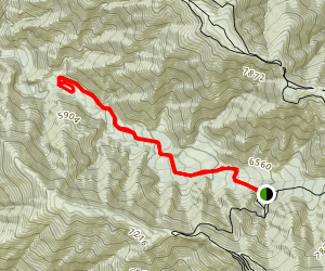 Cabin Flat Campground Trail Map