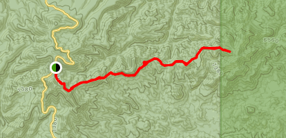 Red Mountain Twenty-Five Trail Map