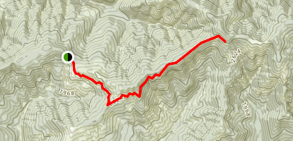 Stag Trail Map