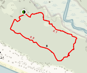 Bald Head Island Forest Preserve Loop Trail Map