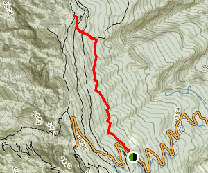 10-K Trail Map