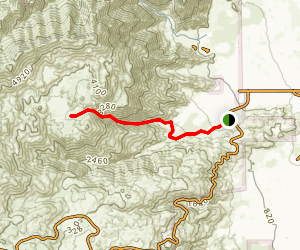 Flat Cat Canyon Trail Map