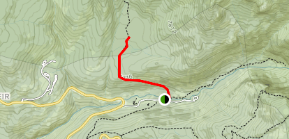 Lodgepole and Willow Meadow Map
