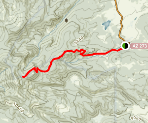 east baldy trail 95 map