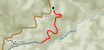 Big Tree Trail Map