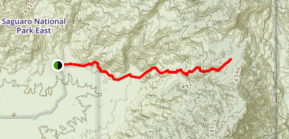 Rincon Creek Trail Map