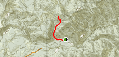 Ogle Mountain Trail Map