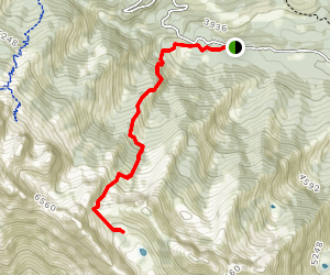 Cabin Trail Map