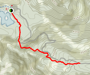 Old Growth Trail Map