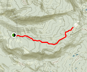 Bingham Ridge Trail Map