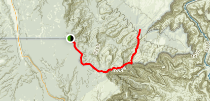 Dog Saddle to Saddle Mountain Trail Map
