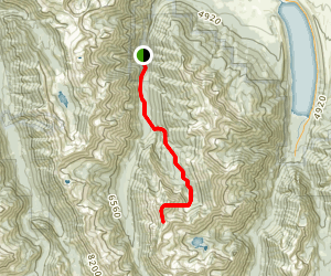 Sacajawea Peak Trail Map