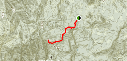 Swamp Peak Trail Map