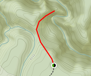 Calloway Trail Map
