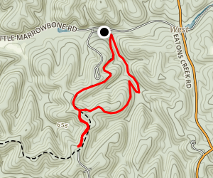 Henry Hollow Loop Trail Map