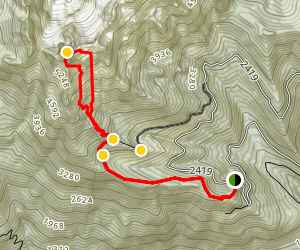 Mount Ellinor Trail  Map