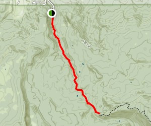 South Fork Little Colorado River Trail 97 Map