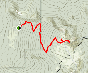 Tipsoo Peak Trail Map