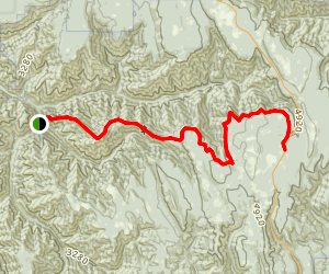 Ninemile Ridge Trail Map